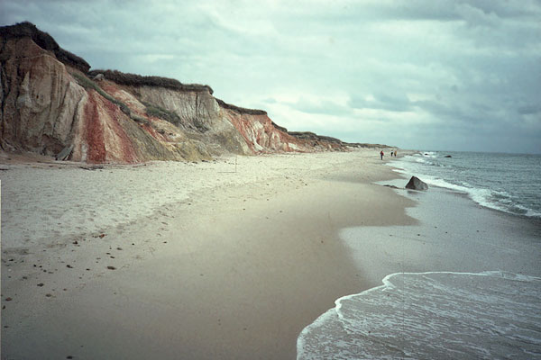 images for possible celtic water horse roleplay Beach_cliff_ocean_kd