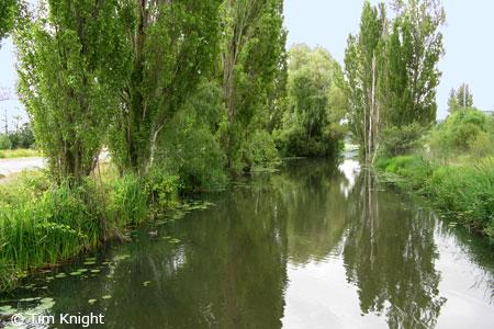 naturemapping habitat river stream. Black Bedroom Furniture Sets. Home Design Ideas