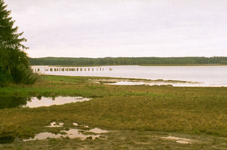 Naturemapping habitat estuaries with pictures of estuary for Code habitat