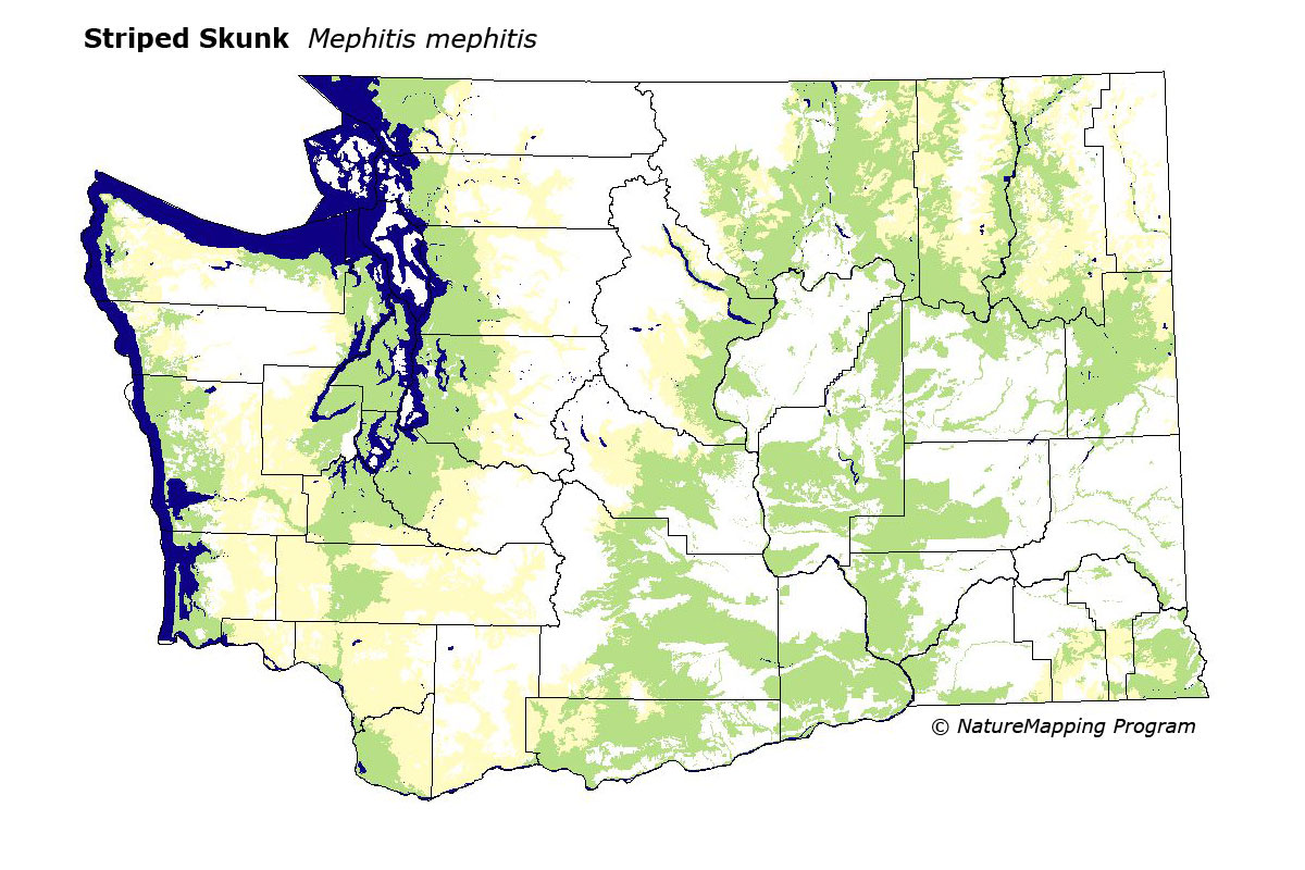 Scablands Washington Map.Distribution Map Striped Skunk Mephitis Mephitis